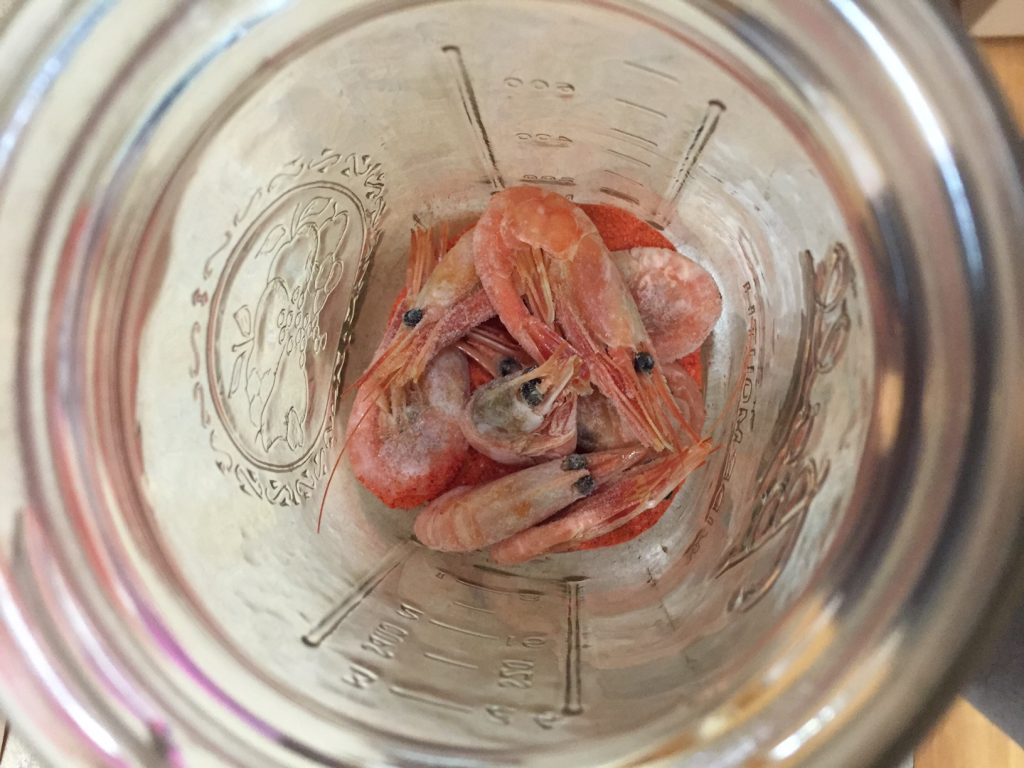 First layer of prawns over Cure mixture in jar | Willamette Valley Outfitters