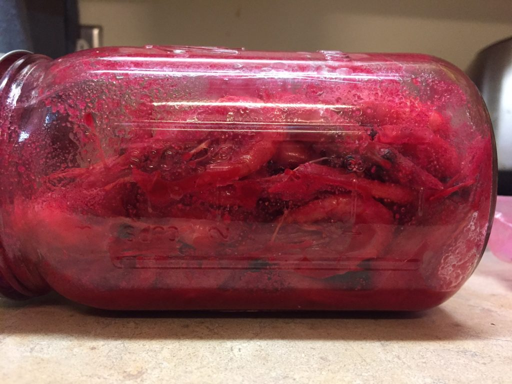 Prawns Cured, Sealed in Jar, and Ready for Action | Willamette Valley Outfitters