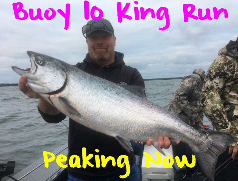 Buoy 10 King Fun Peaking Now | Schedule a Fishing Trip Today.